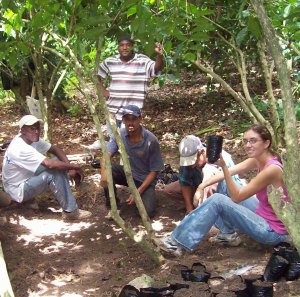 Kathryn Ernst Planting Coffee as a Peace Corps Volunteer in the Dominican Republic