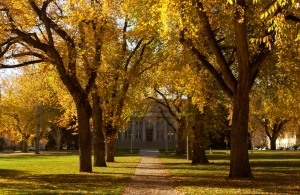 Autumn on Colorado State University Campus