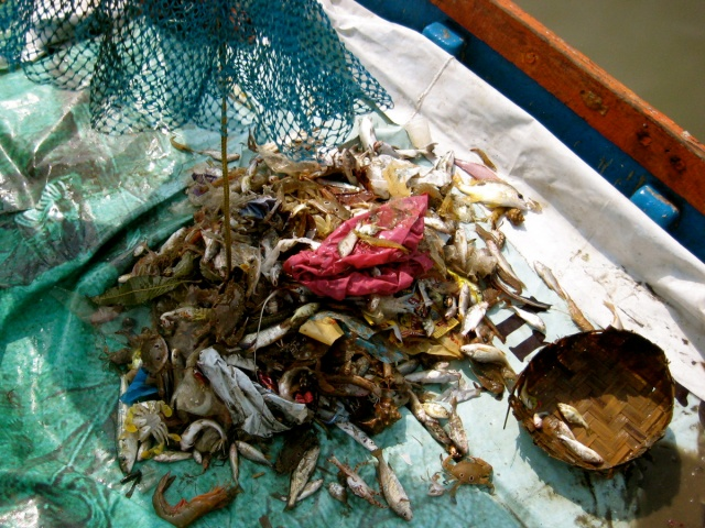 Trash in the catch in Mumbai Bay