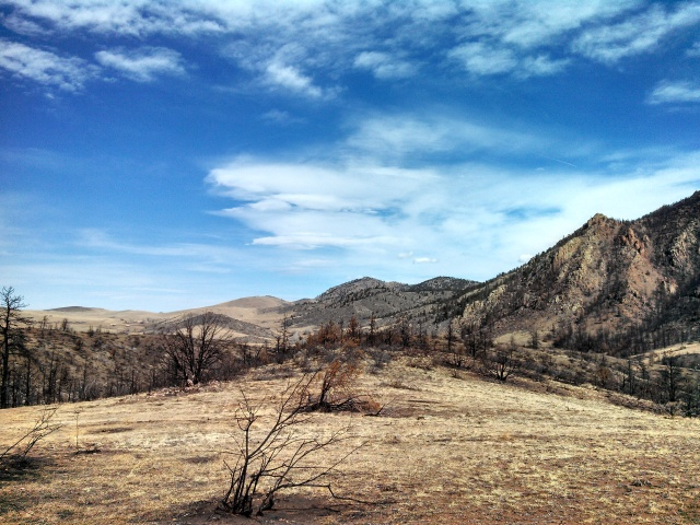 Wildfire Devastation up the Poudre Canyon