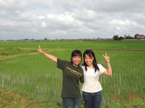 Trang and Thuy in a rice field in Vietnam
