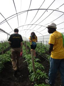The Growing Capital team touring a greenhouse in Nicaragua