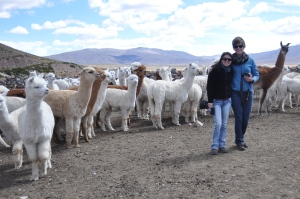 Claudia Molina and Emily Fifield, two of the three co-founders of Chaka Fibers, with the alpaca ranchers in the Peruvian highlands.