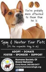 HSGB Educational Posters Spay & Neuter